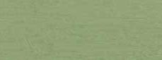 grönjord från Brentonico 500 g
